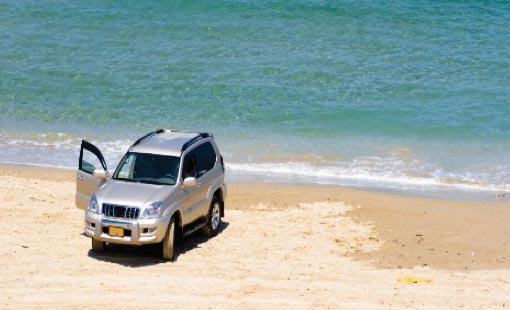 Diamond Tek - Protect Your Investment - Diamond Tek Car Care